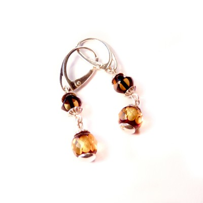 /361-551-thickbox/silver-amber-earrings.jpg