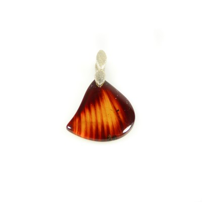 /496-704-thickbox/double-sided-amber-pendant.jpg