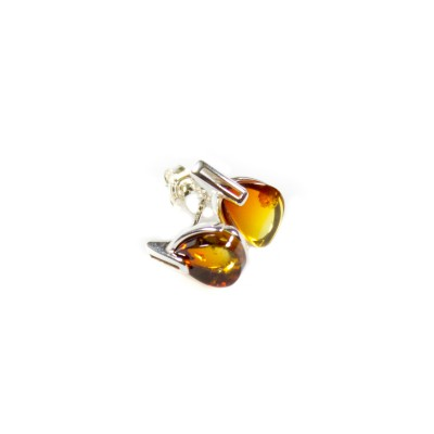 /655-879-thickbox/burning-amber-stud-earrings.jpg